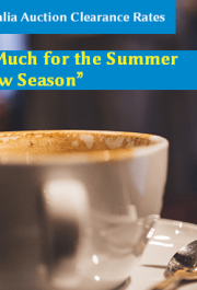 """So Much for the Summer """"Slow Season"""" featured"""