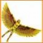 Profile picture of Daedalus
