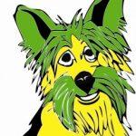 Profile photo of Yorkie